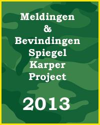 SKP 2013