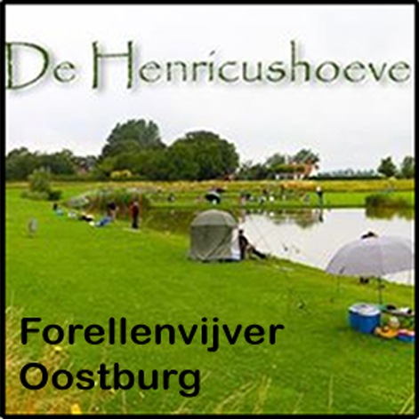 Henricushoeve