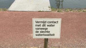 Blauwalg-in-haventje-Otheense-Kreek-foto-Gemeente-Terneuzen